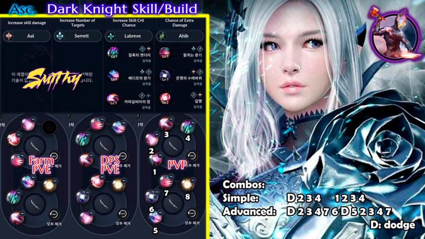Skill build Ascension Dark Knight